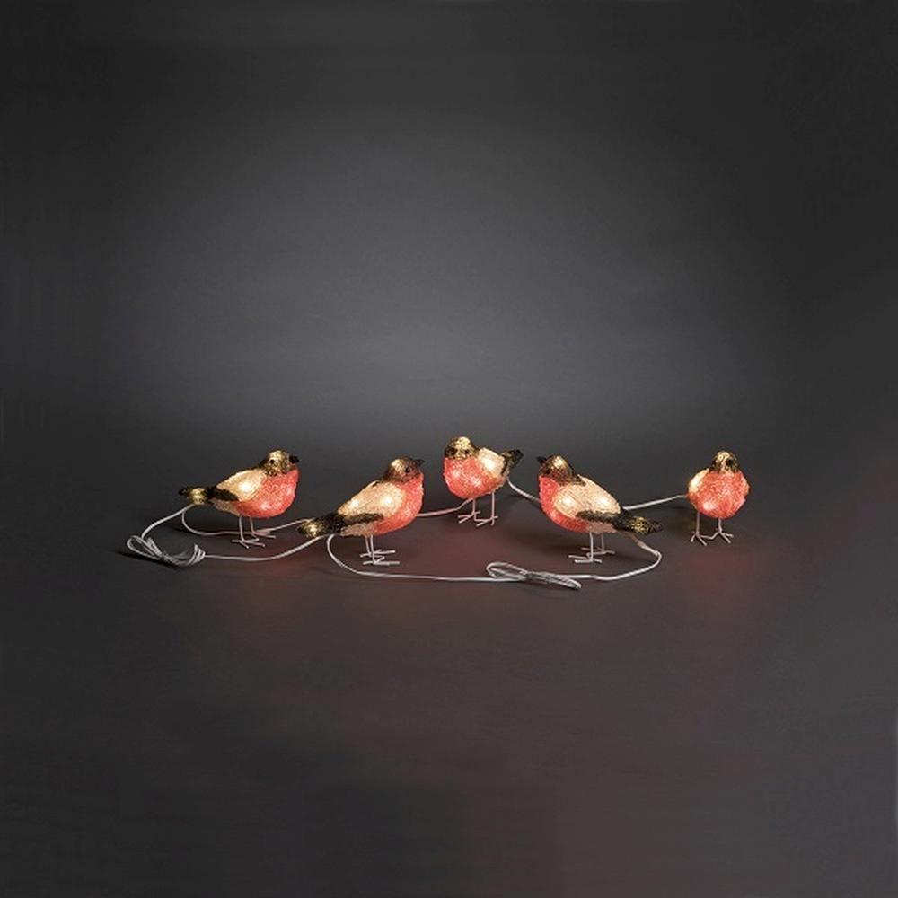 LED Acryl 5er Rotkehlchen 12x15cm 40er kaltweiß außen Konstsmide 6269-203