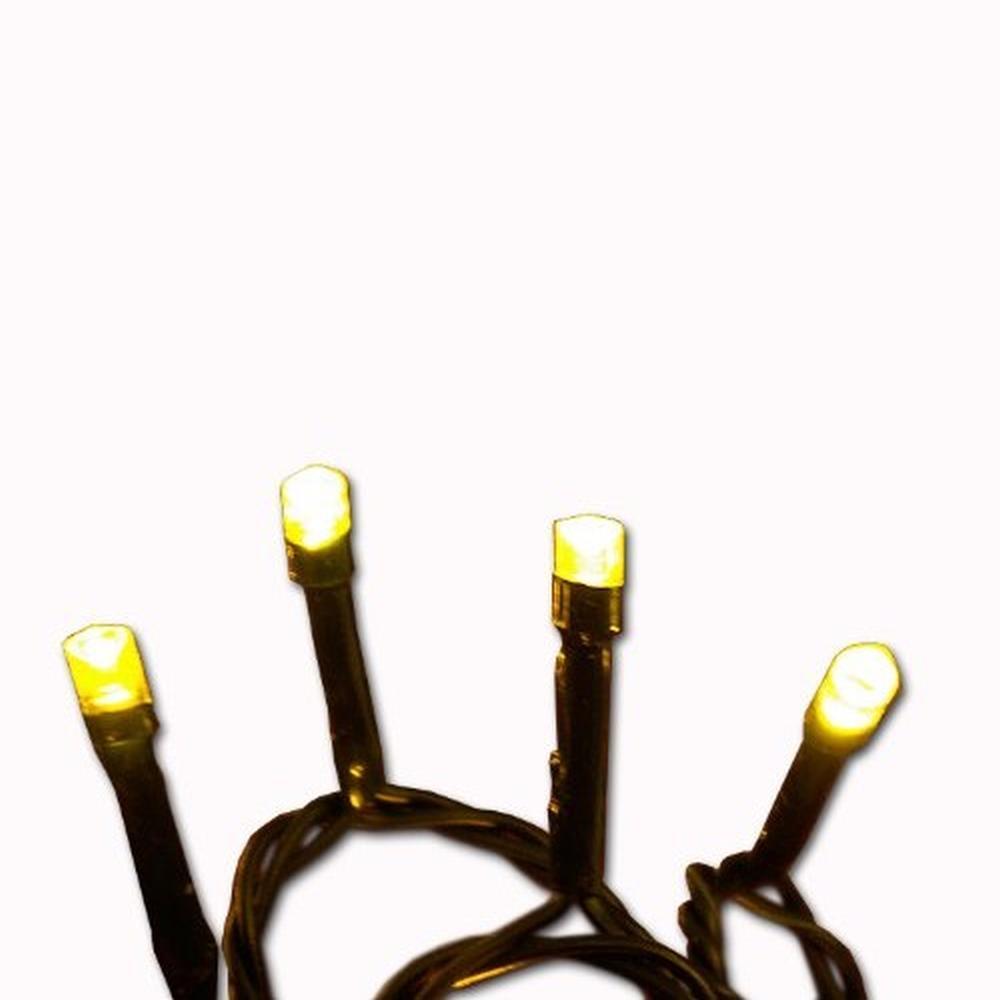 LED Lichterkette 50er warmweiß-grün ein Strang innen BI11583
